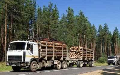 Лесовоз Лесовозы для перевозки леса, аренда и услуги. заказать или взять в аренду, цены, предложения компаний