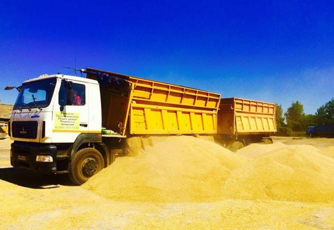 Прием заявок на перевозку зерна и кормов. Диспетчерская - Благовещенск, цены, предложения специалистов