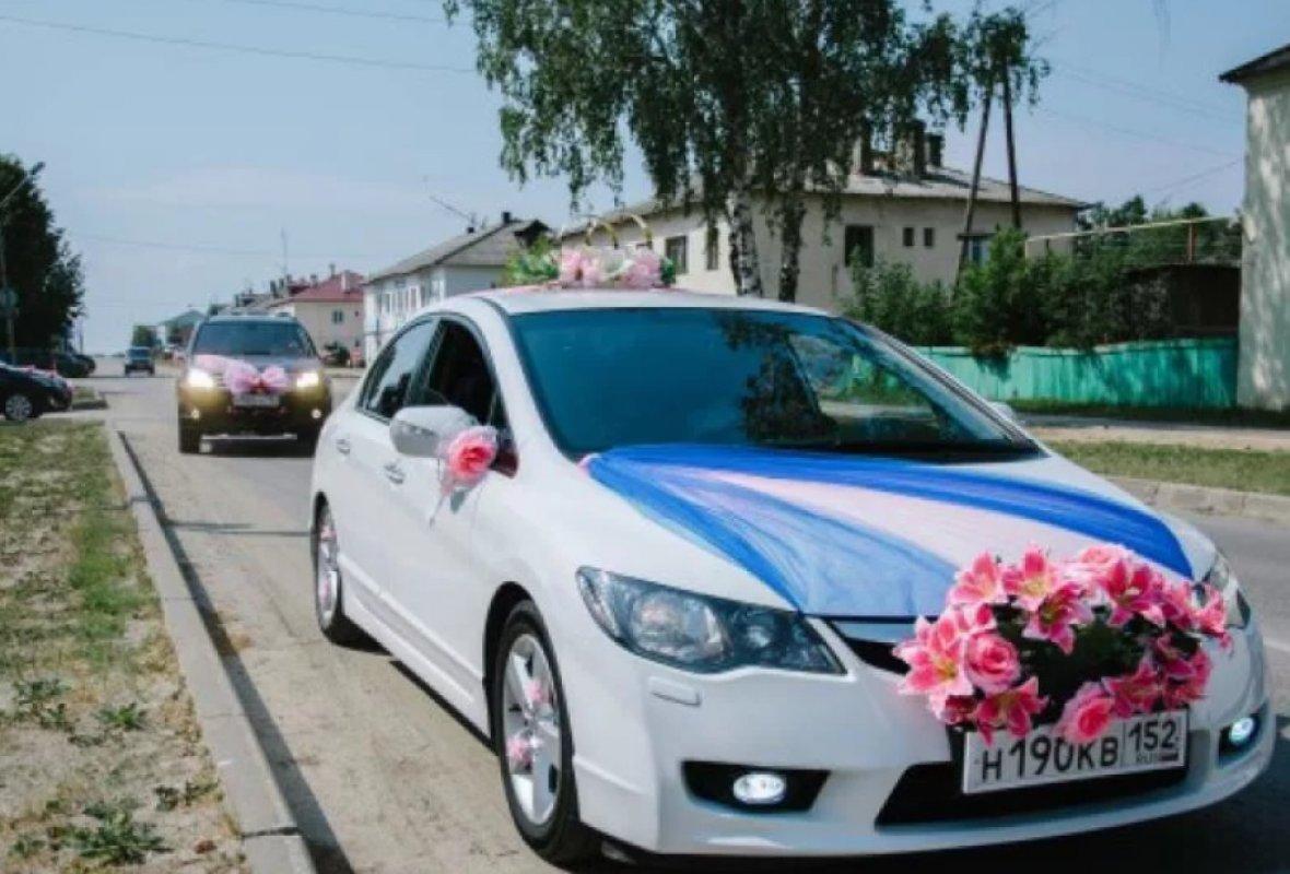 Автомобиль легковой Hyundai, KIA, Toyota заказать или взять в аренду, цены, предложения компаний
